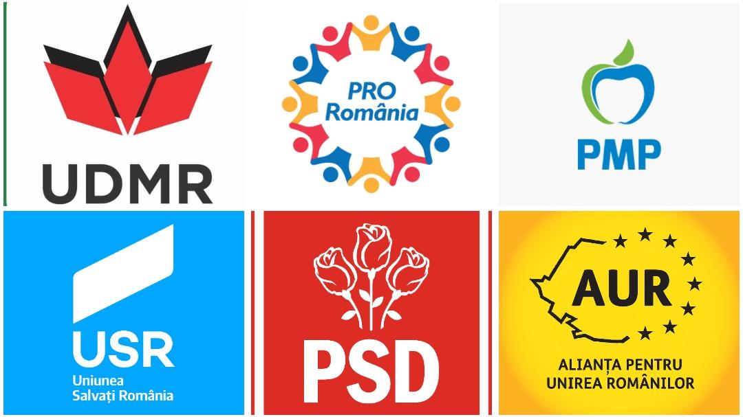 Diaspora. Care sunt cele 7 partide care au depus liste pentru alegerile parlamentare