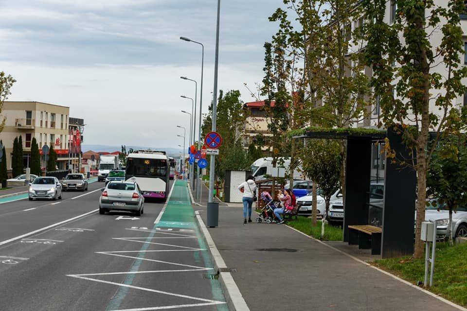 Stațiile de transport public din Cluj-Napoca cu acoperiș verde au trecut testul verii