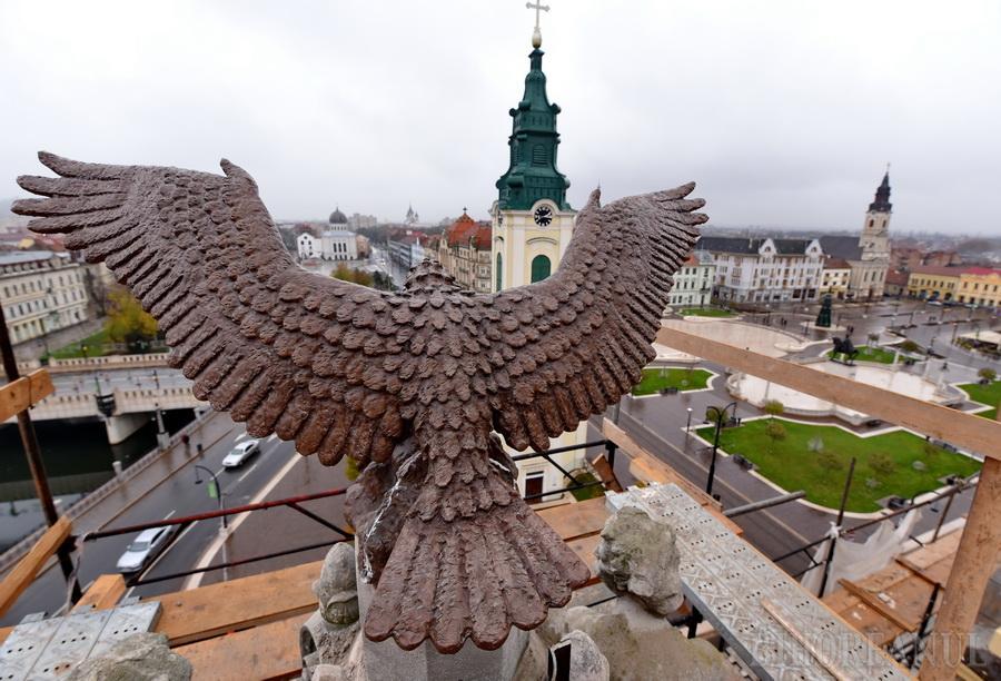 IMAGINI SPECTACULOASE. Constructorii au ridicat pe acoperişul Primăriei Oradea vulturul ocrotitor al oraşului (FOTO / VIDEO)