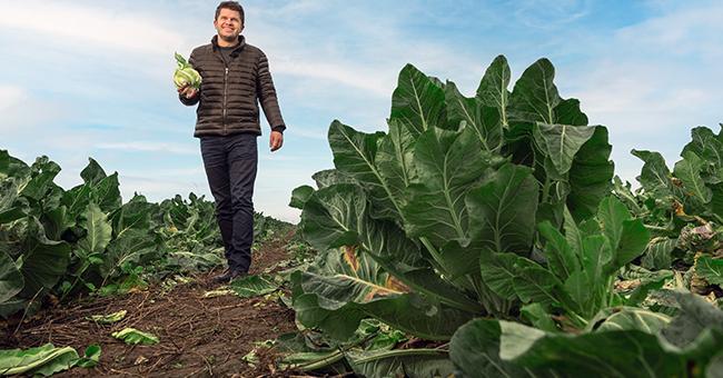 Fermierul Cosmin Cionca își vinde legumele prin supermarket-uri din nouă județe