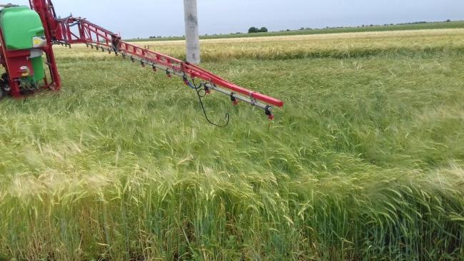 Sub coordonarea CJT, olandezii vor informatiza agricultura ecologică din Timiș