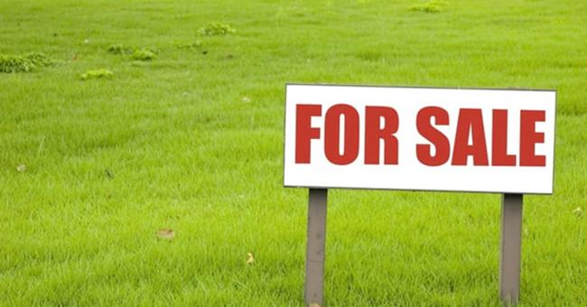 Danezii de la FirstFarms vând 238 de hectare de teren din vestul României cu peste 11,4 milioane euro