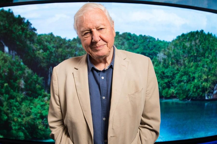 Sir David Attenborough s-a vaccinat împotriva COVID-19 / Mesajul naturalistului britanic