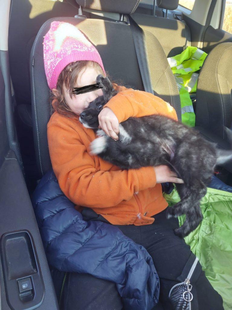 Minora de 9 ani, din comuna Izvoare a fost găsită pe un câmp – GAZETA de SUD