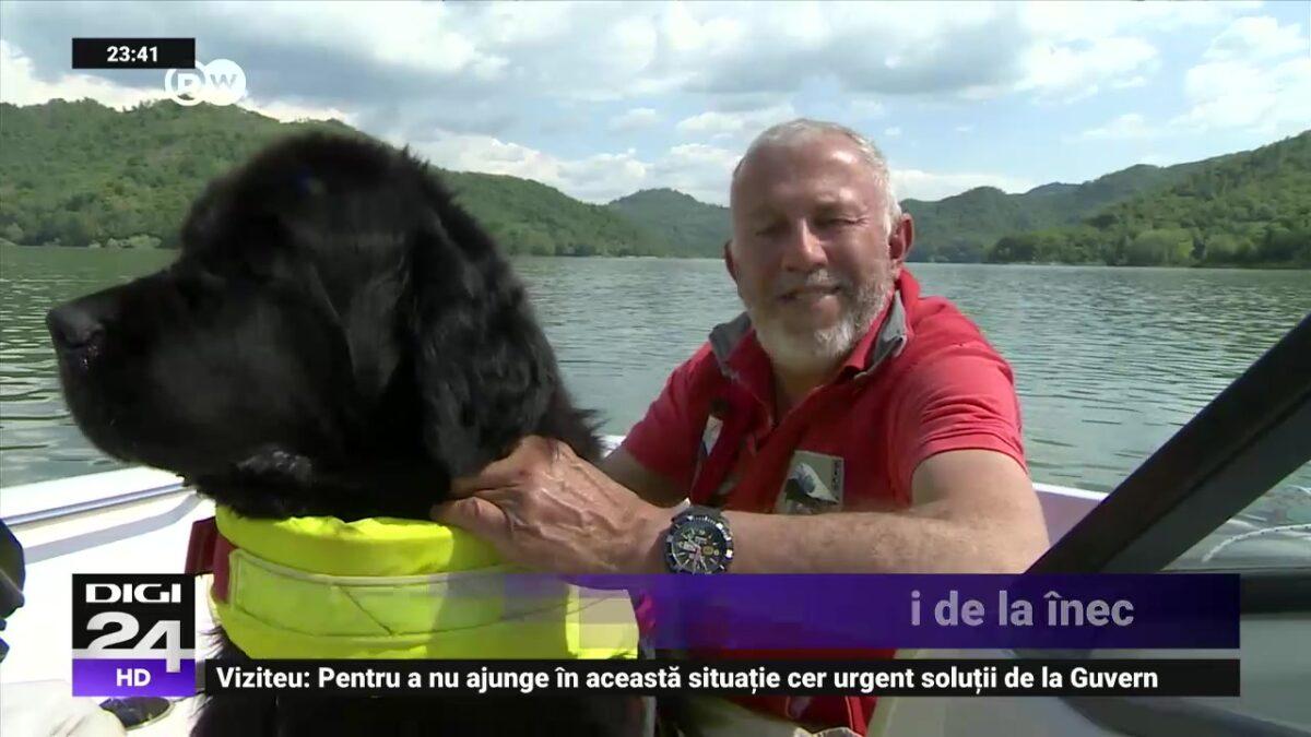 Ettore este labradorul care salvează oamenii de la înec