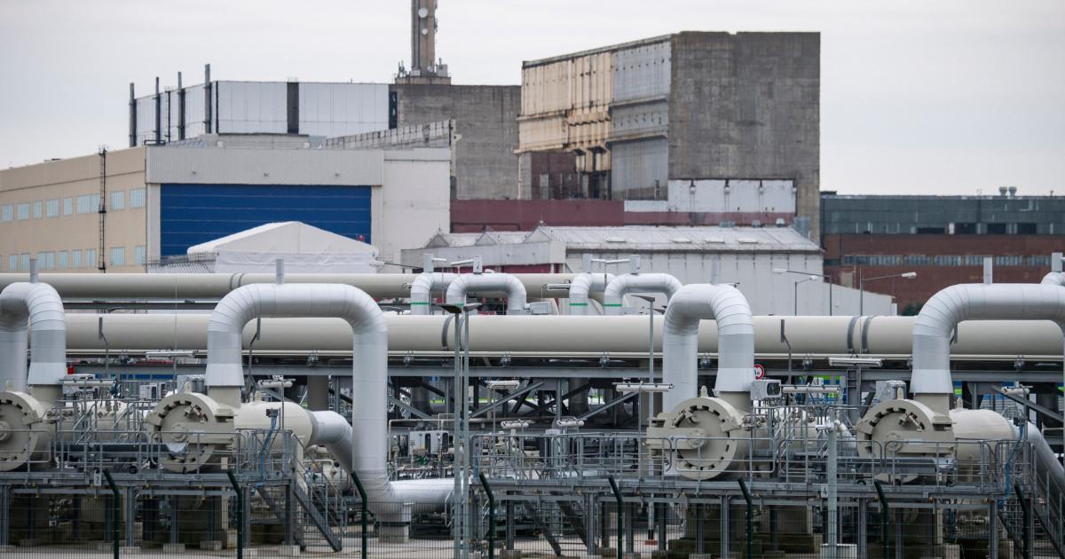 Rusia susține că Gazprom a început să-şi folosească stocurile de gaze pentru a stabiliza piața europeană. Ce scenarii studiază UE